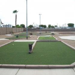 Las Quintas Oasis RV Resort - Yuma, AZ - RV Parks