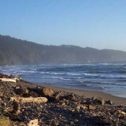 Cape Lookout State Park - Tillamook, OR - Oregon State Parks