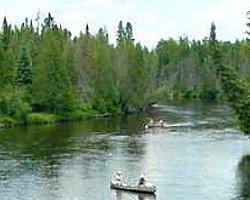 Hartwick Pines State Park - Grayling, MI - Michigan State Parks