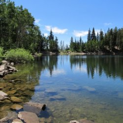 Strawberry Bay Campground Wasatch-Cache National Forest - South Jordan, UT - National Parks