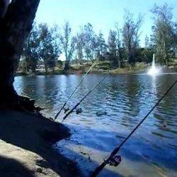 Angler's Lake - Hemet, CA - RV Parks