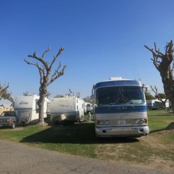 Viking RV Park - Kingsburg, CA - RV Parks