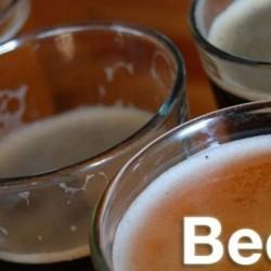 Dunedin Brewery - dunedin, FL - Restaurants