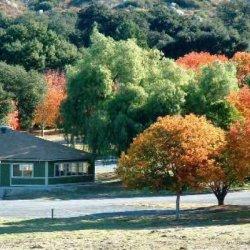 Potrero County Park - Potrero, CA - County / City Parks