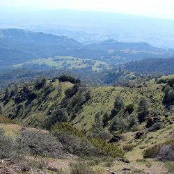 Mount Diablo State Park - Clayton, CA - California State Parks
