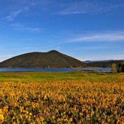 Vega State Park - Collbran , CO - Colorado State Parks