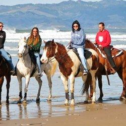 Pacific Dunes Ranch RV Resort - Oceano, CA - Encore Resorts