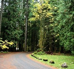 Squire Creek Park & Campground - Arlington, WA - County / City Parks