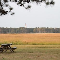 Chincoteague Island KOA - Chincoteague, VA - KOA