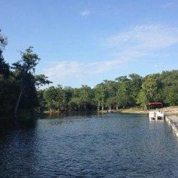Ellie Rays RV Resort - Branford, FL - RV Parks