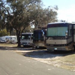 Bay Aire RV Park - Palm Harbor, FL - RV Parks