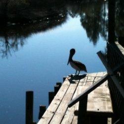 Deer Haven Park - Southport, FL - RV Parks