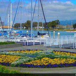 Grand Marina - Alameda, CA - RV Parks