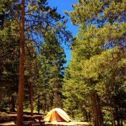 Estes Park Campground at East Portal - Estes Park, CO - RV Parks
