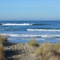 South Beach State Park - Newport, OR - Oregon State Parks
