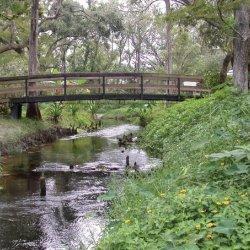 Mill Creek RV Resort - Kissimmee, FL - Sun Resorts