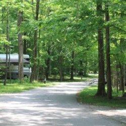 Meeman Shelby Forest State Pk - Millington, TN - RV Parks