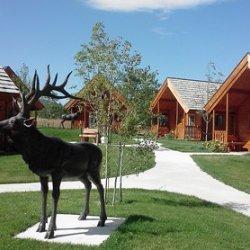 Elkhorn Ridge RV Resort & Campground - Spearfish, SD - RV Parks