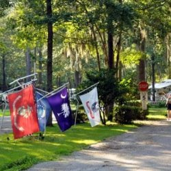 The Oaks at Point South RV - Yemassee, SC - Thousand Trails Resorts