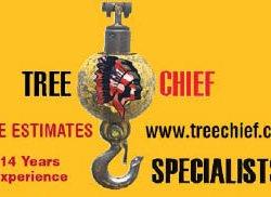Tree Chief Specialists, Llc. - Dover, NJ - Home & Garden
