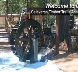 Calaveras Timber Trails Park - Avery, CA - RV Parks