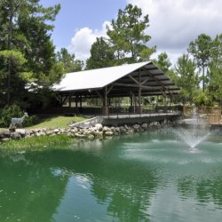 Williston Crossings RV Resort - Williston, FL - RV Parks