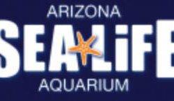 Sea Life Arizona Aquarium - Tempe, AZ - Entertainment