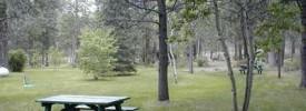 Walt's Rv Camp - ,  - RV Parks