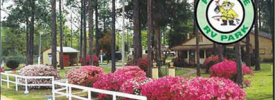 Pine Lake RV Park - ,  - RV Parks