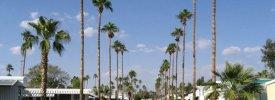 Royal Palm RV Resort