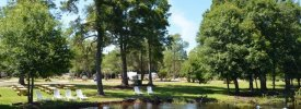 Cypress Camping Resort - ,  - RV Parks