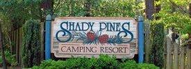 Shady Pines RV Resort