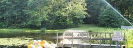 Sunfox Campground - ,  - RV Parks