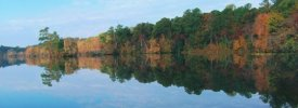 Lums Pond State Park - ,  - Delaware State Parks