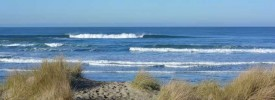 South Beach State Park - ,  - Oregon State Parks