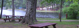 Shady Point Beach & Campgrounds - ,  - RV Parks