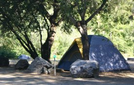 Bear River Park and Campground