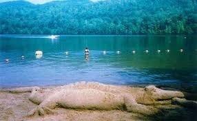Stewarts Pond Campsites