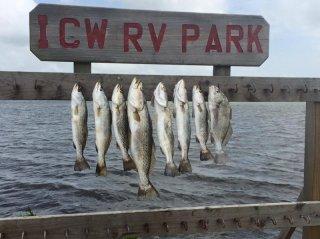 ICW Rv Park
